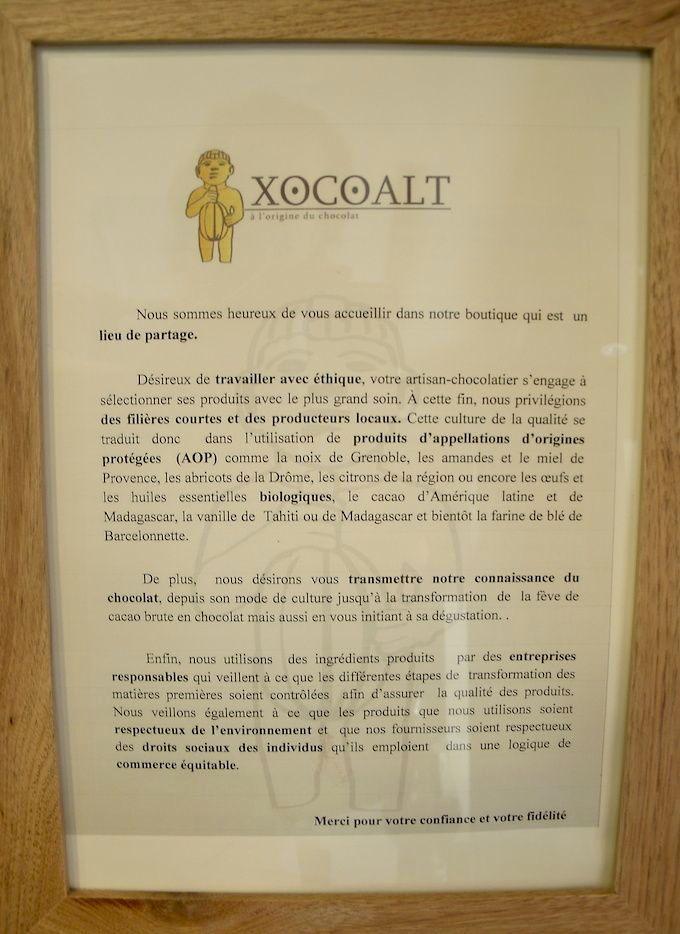 Xocoalt Charter