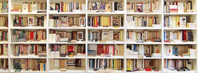 Big choice at Librairie Vigna LGBT et féminisme in Nice