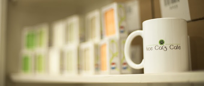 Nice Cat's Café mug