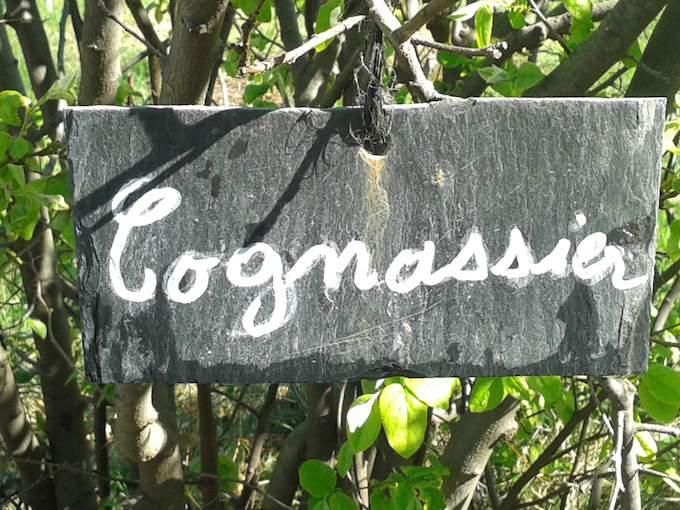Cognassier at La Bonne Étape