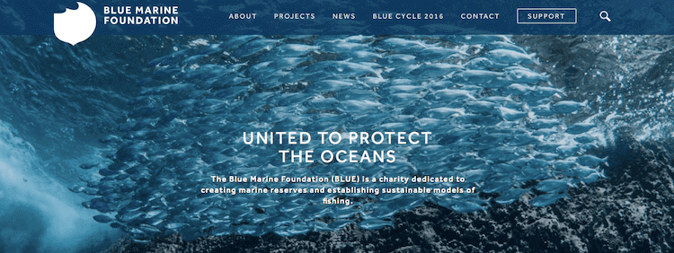 BLUE homepage