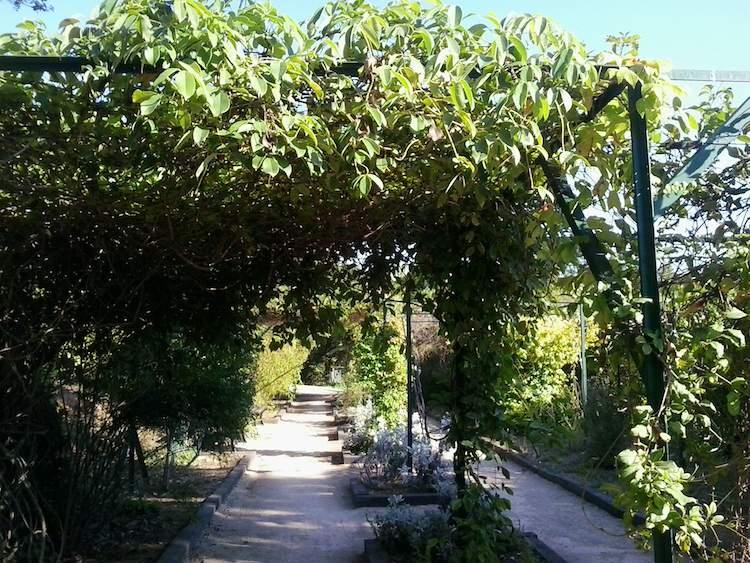 jardin botanique de nice an oasis of peace riviera buzz On jardin botanique nice